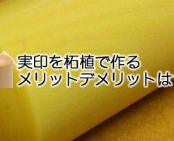 薩摩本柘を印鑑素材に実印作成するメリットデメリットは?